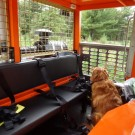 Achiever RT-01 UJ Utility Vehicle Bench Seat with Dog